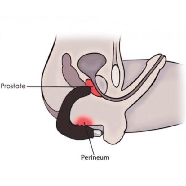 Estimulador de Próstata Recarregável com 7 Modos de Vibração - FLEXIBLE FABULOUS VIBRATION FREEQUENCY - Sexshop